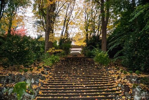 Visit to Alfred Nicholas Gardens