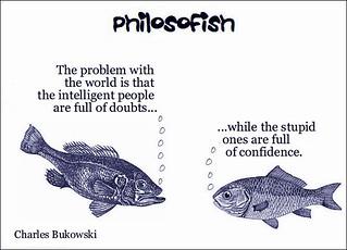 philosofish 41