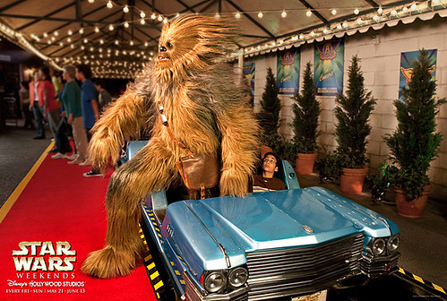 Star Wars Weekend 2013:  Chewbacca