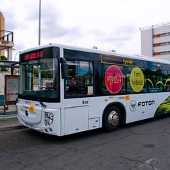autobus hibridoOK