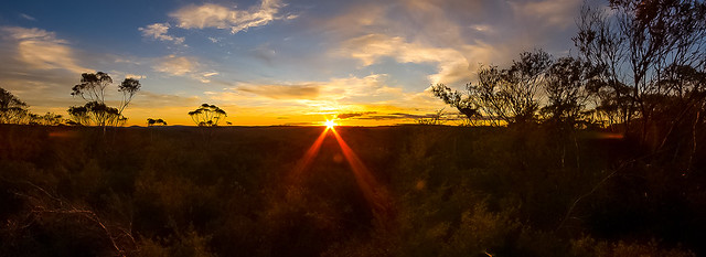 Newnes State Forest Sunset Panorama