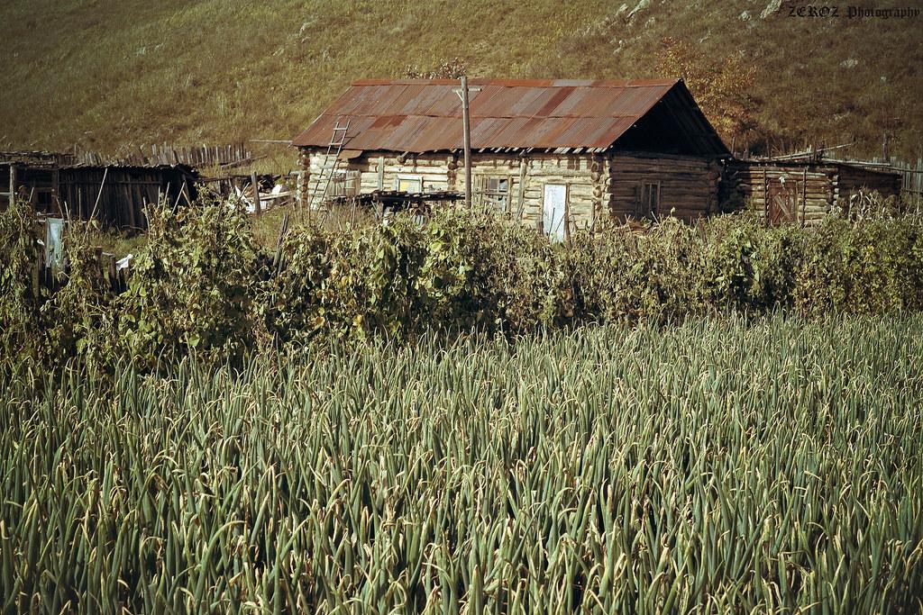 內蒙古‧印象2140-43-2.jpg