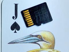 Cards three ways