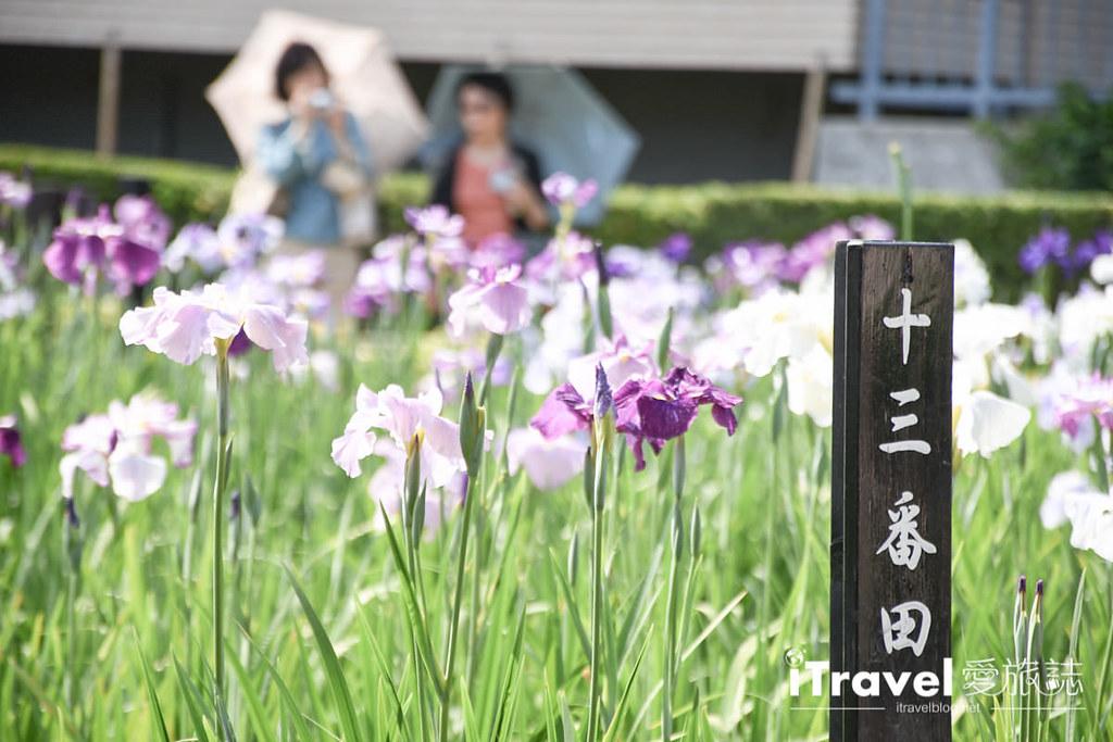 东京自由行 32