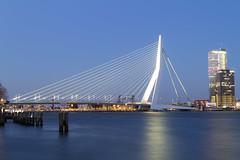 Erasmus Bridge by Night, Rotterdam