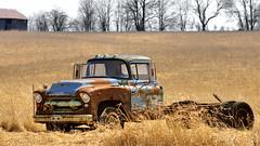 Chevrolet truck wreck in farm field in Simcoe County, Ontario