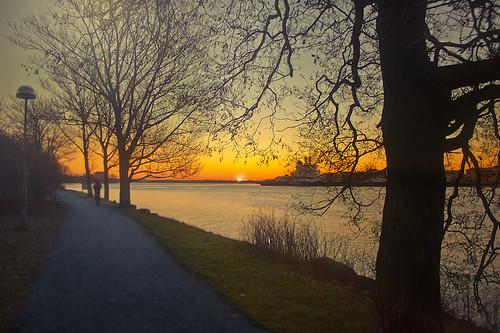 ocean road trees man lamp sunrise finland helsinki branch ship silhouettes running human runner