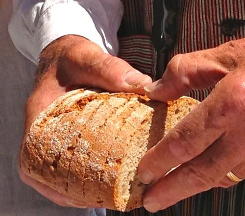 Outdoor cooking in rural Majorca