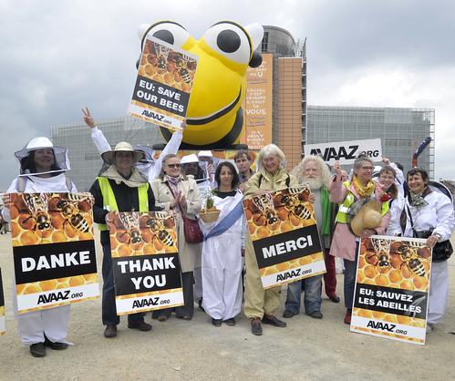 蜂農與環保團體在歐盟總部外表達謝意。(圖片提供:Avaaz.org)