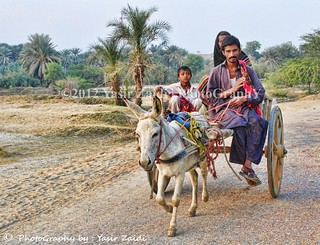 People & Culture of Sindh