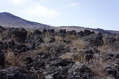 三原山裏砂漠