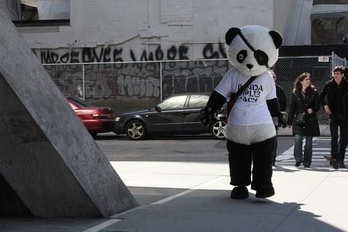 black-eyed panda