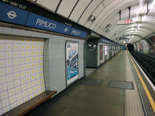 pimlico 1