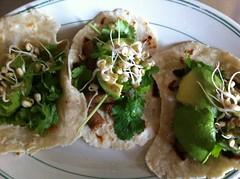 meal, flatbread, taco, produce, food, dish, cuisine,