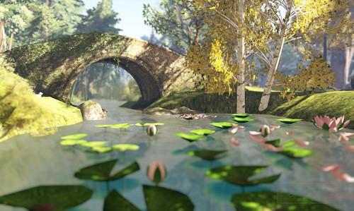 Where's Dim Sum? #075 - Lotus pond