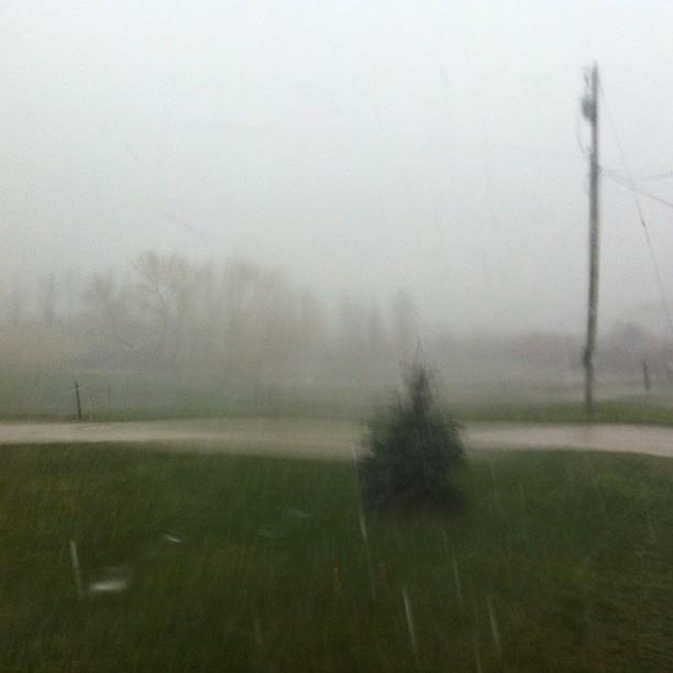 Holy rain! #thunderstorm #madeitinthehousejustintime#needanark