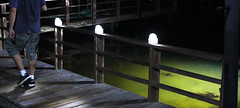 Walkway motion activated lights