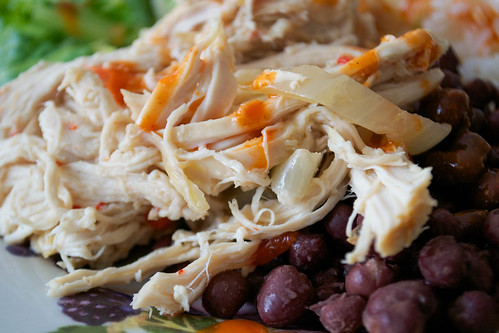 slow cooker burrito chicken on plate