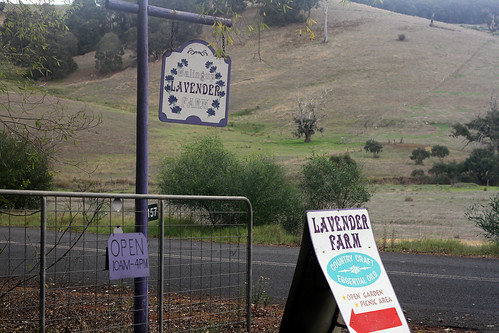 Balingup Lavender Farm - Entrance