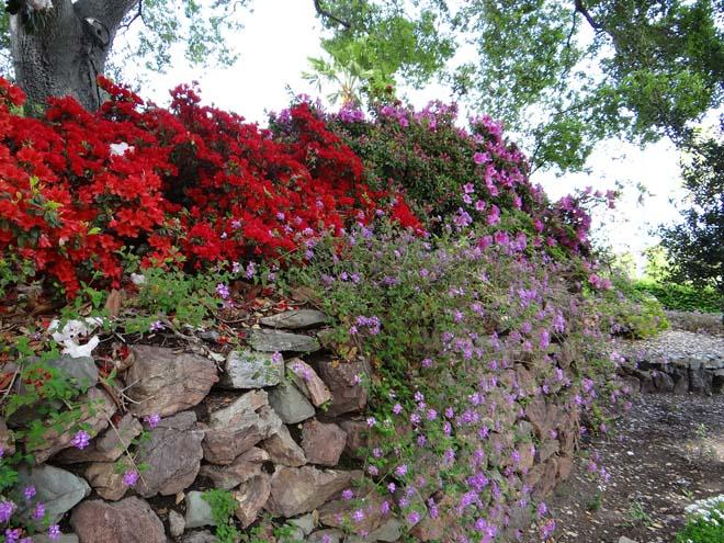 Hearst Castle gardens 03