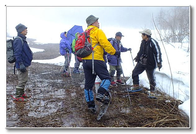 雪解け水でできた湿地を歩く.ここでもかんじきは強い味方になる.