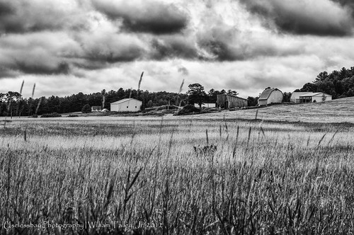 vacation blackandwhite rural landscape nikon flickr unitedstates wordpress maine 2012 wiscasset uselessbay edgecomb wiscassetmaine 500px mastercollection uselessbayphotography
