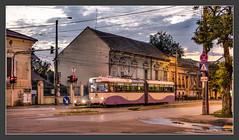 Tram in Timisoara