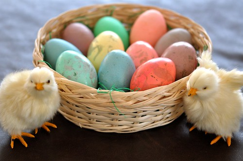Egg Dyeing Robin Eggs