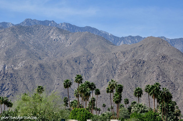 palm_springs_mtns_web