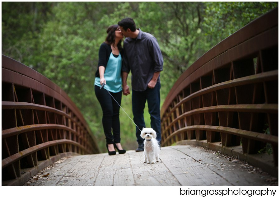 Rachael&Andy_Engagement_BrianGrossPhotography-217_WEB