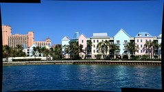 Marina Village PANORAMA (#7380)
