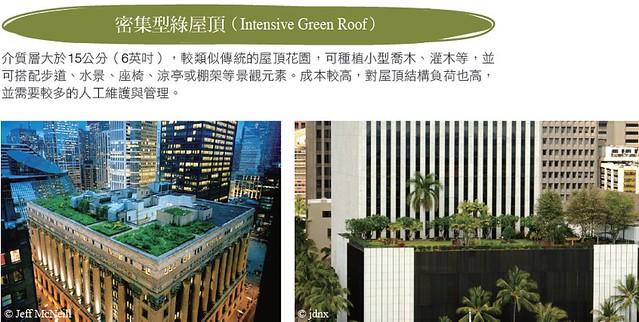 密集型綠屋頂