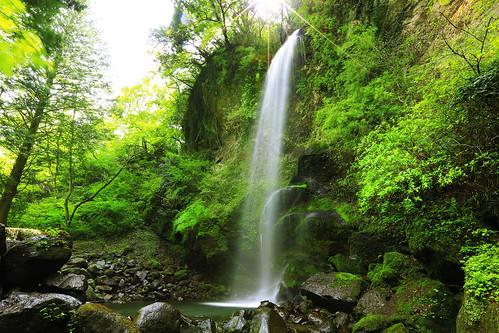 sun green water rock canon eos waterfall moss 5d