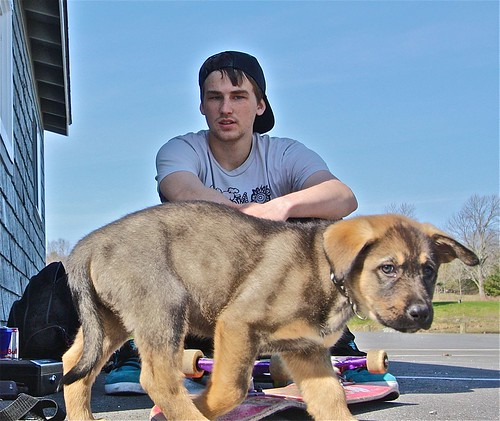 The Skateboarder and his Puppy