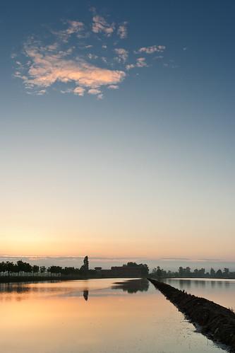 italy sunrise canon italia nuvola alba cielo ricefield riflesso risaia proh barengo canoneos1000d tamronsp1750mmf28xrdiiivcld