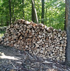 wood pile on a steep slope