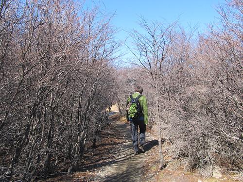 El Chaltén: trek de la Laguna de los Tres