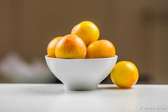 Yellow Plums / Prugne gialle