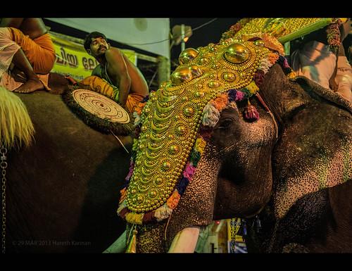 Pooram festival at Kerala,India.