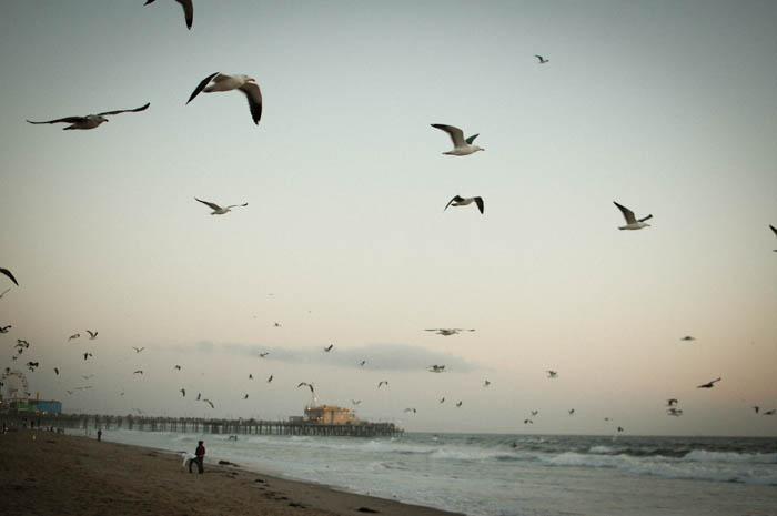 @ Santa Monica