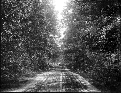 Claflin Photograph, Road near Hotel, Tyson, Vermont