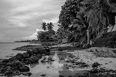 Tahiti #1