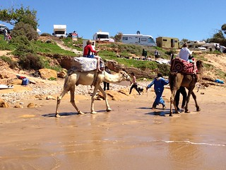 Image of Plage de Taghazout near Taghazout. beach surf surfing agadir morocco taghazout