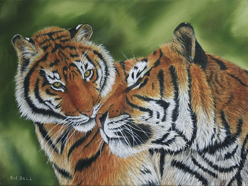 Mother Tiger and Cub by Sid's art