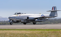 IMG_2761 - Gloster Meteor F8