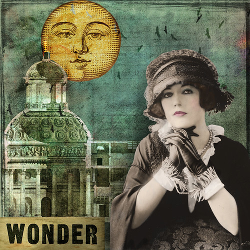 Wonder by Lynne Larkin