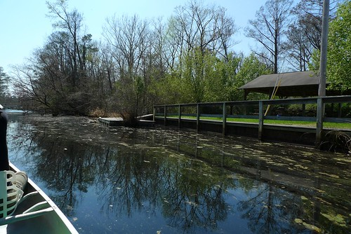 Bennett's Creek Floating Dock - Gatesville, NC