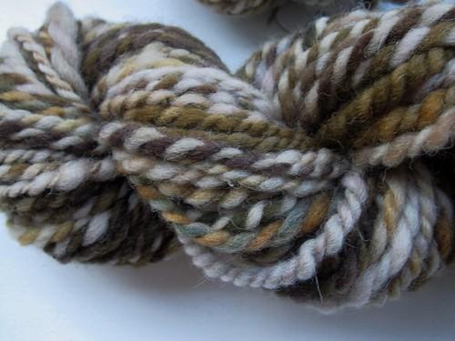 Mouse Ears Shetland (7)
