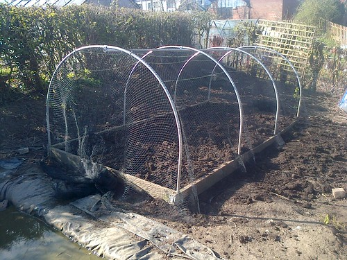 polytunnel with net Apr 13