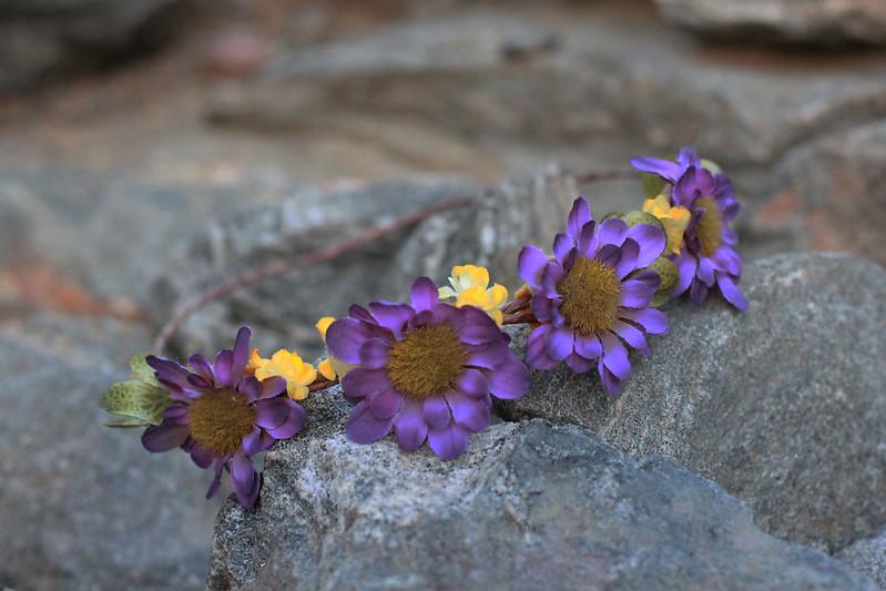 floralone